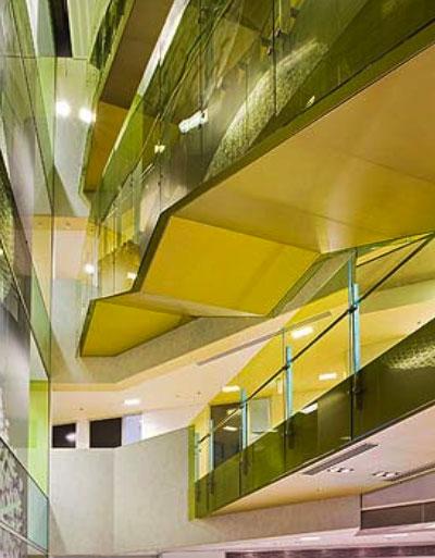Queensland Brain Institute3