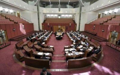 Senate Inquiry Uncovers Scandalous Construction Con
